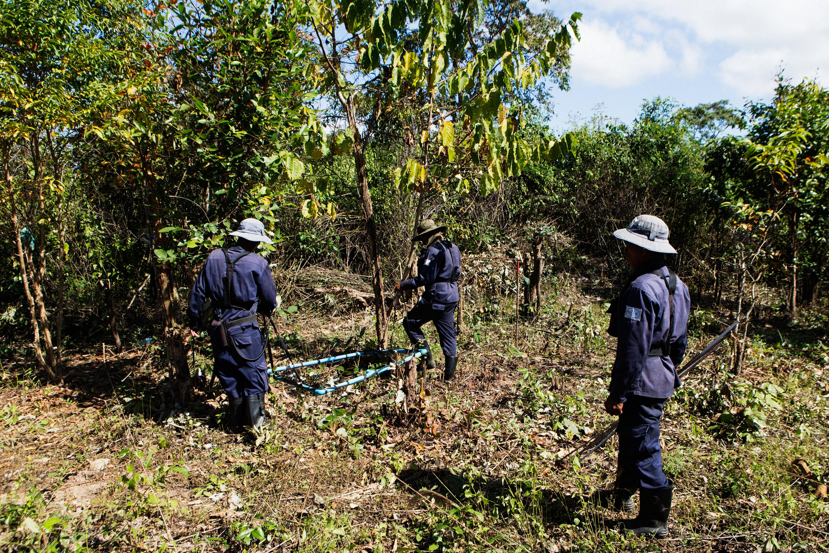A clearance team searches the area with metal detectors for any UXO that may be buried under the ground.