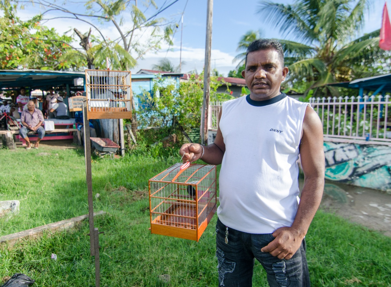 Desh, a veteran bird seller who operates his business from his pickup truck.