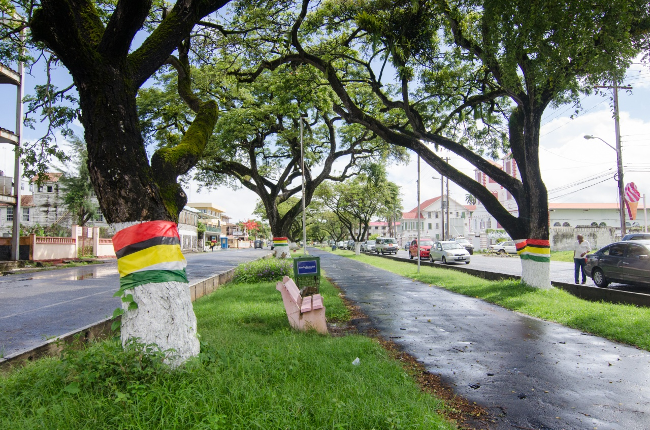 1. A rooftop view of Georgetown, with the Demerara River to the right. / 2. Main Street in Georgetown, with Guyanese flags wrapped around trees.