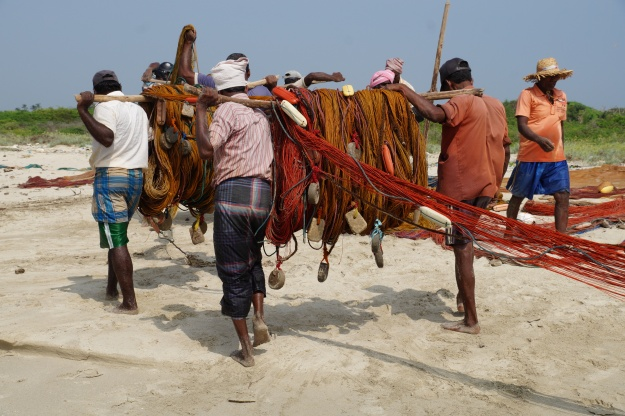1. Carrying the karavalai equipment back to the truck after lunch. The team of fishermen will drive a bit farther down the coast and set up for a second round in the afternoon. 2. Pulling in the karavalai net after three hours waiting on the shore.