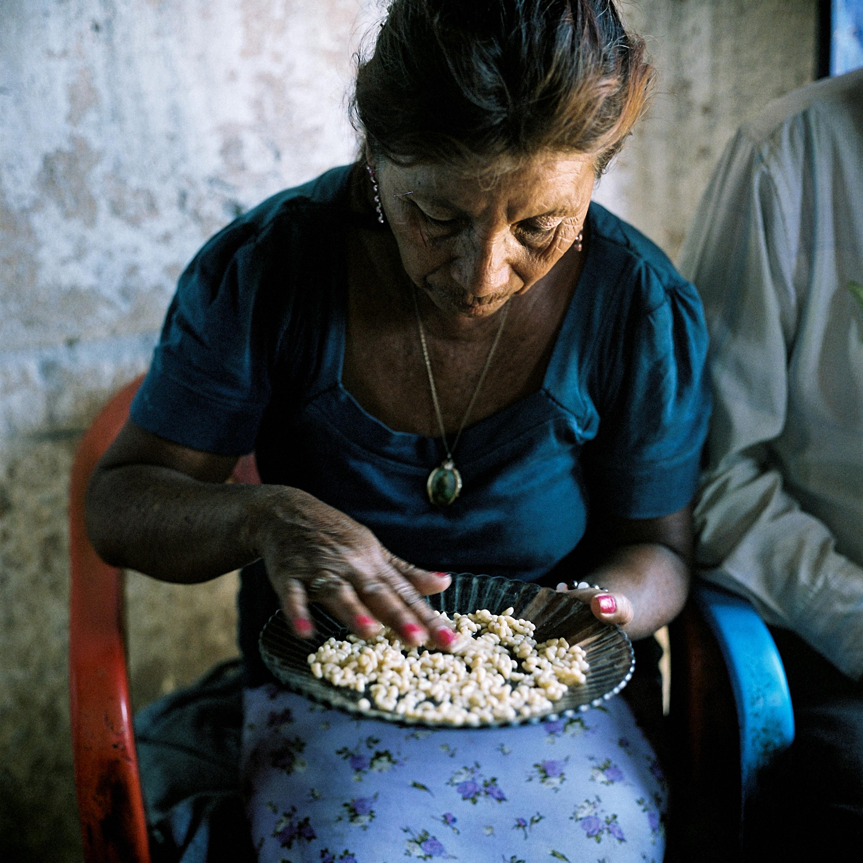 Maria Margarita, wife of Prieto, removes dirt from a plate of escamoles that Francisco and his son Blas, collected in the morning. Cerro Prieto, San Luis PotosÌ.