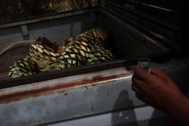 A shot of mezcal after a day harvesting in the fields of Mihuatlan, Oaxaca, Mexico.