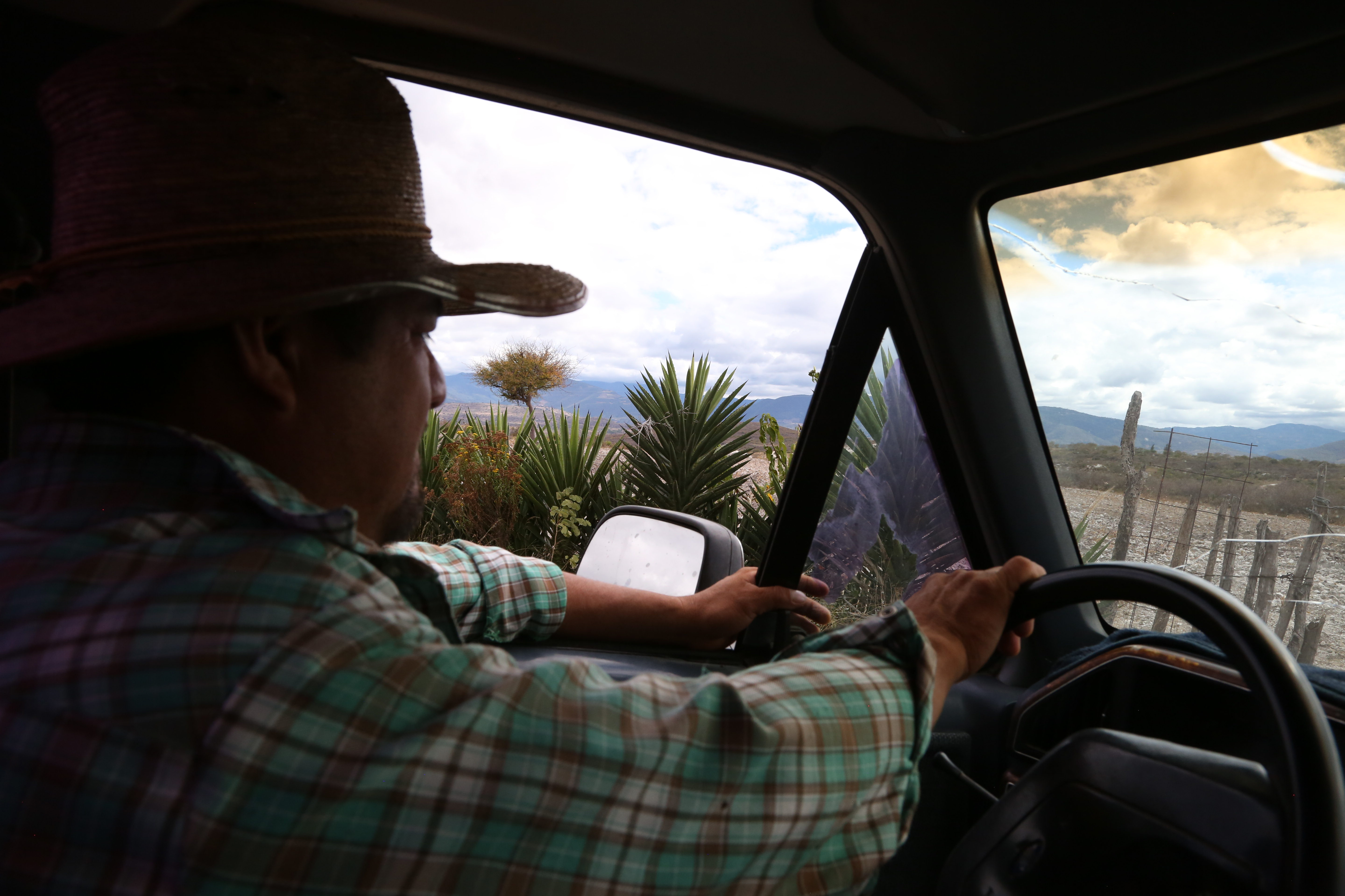 Augustin Guendulain drives by agaves in his field near Mihuatlan, Oaxaca, Mexico.