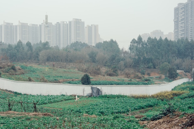 Urban farming plots spread along the outskirts of Chengdu.
