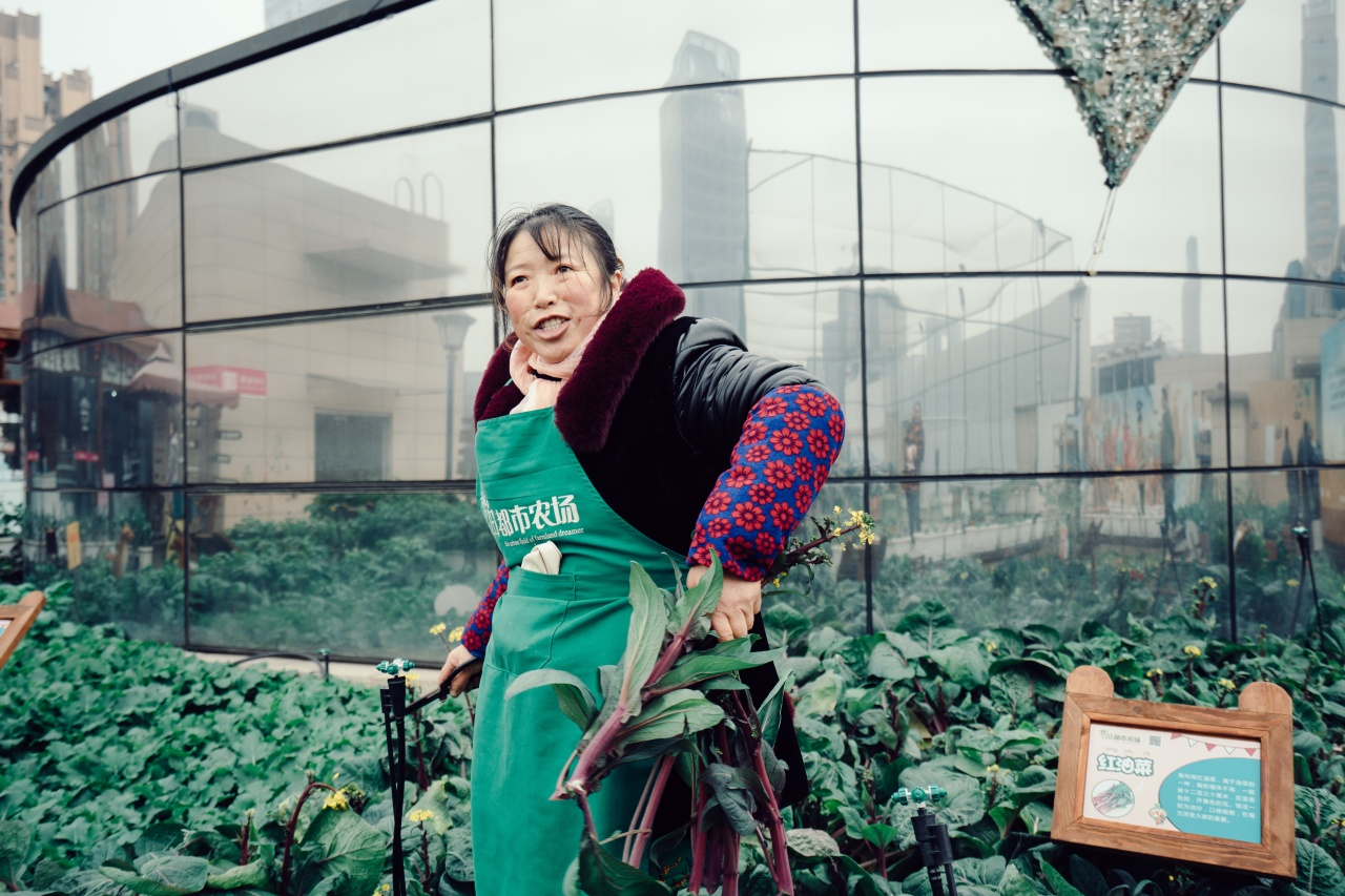 "Ms. Wong, 60, works at the ""Sky Farm,"" a collection of plots located at the top of a building in downtown Chengdu."