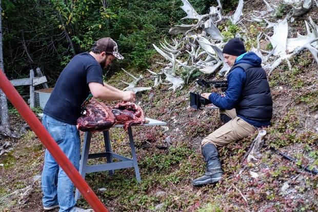 Butchering moose in Newfoundland.