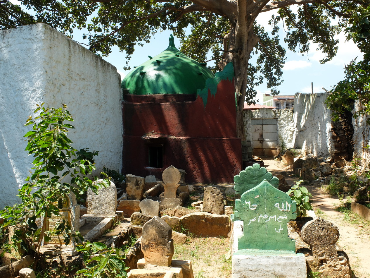Part of the Tomb of Sheikh Abadir Umar al-Rida complex.