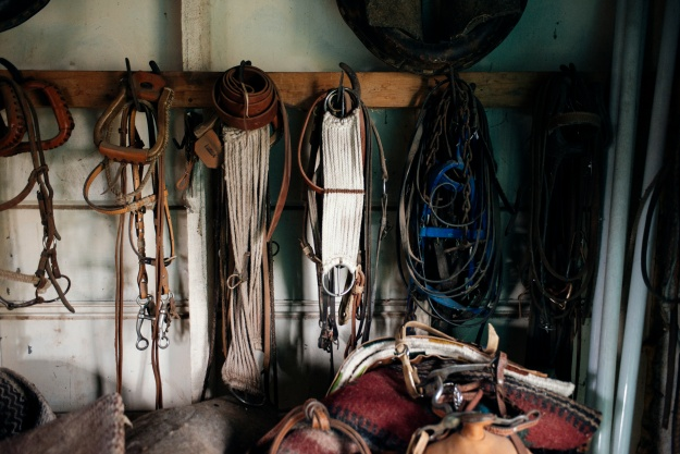 1. Scott McIvor's family have raised Hereford cattle on this land for 125 years. 2. Old saddles, bridles, and shoeing equipment hang in the McIvor's tack shed.