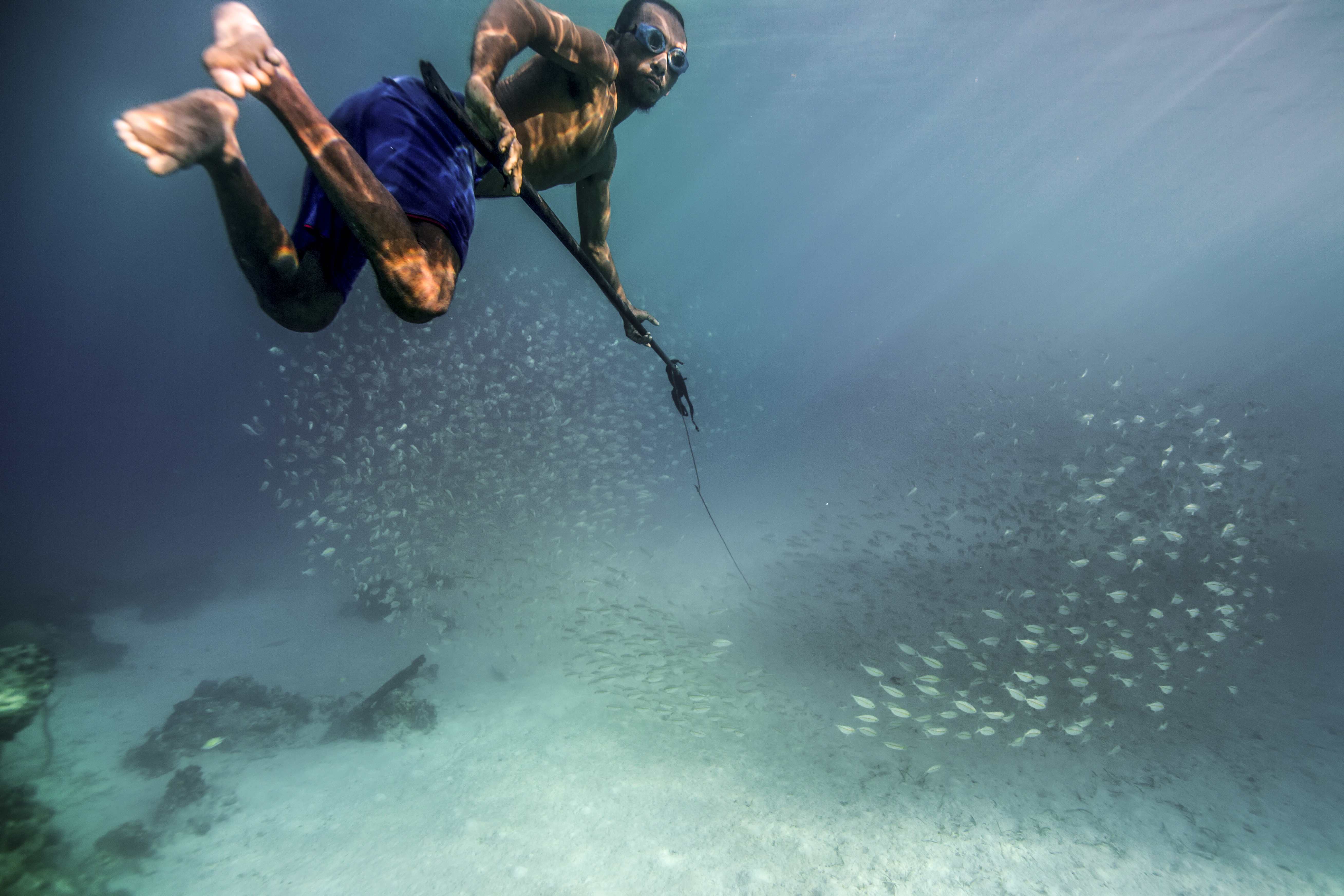 Traditionally hunter-gatherers, the Bajau have provided for themselves primarily by spearfishing. But as seas are fished out, it has become harder for them to support themselves.