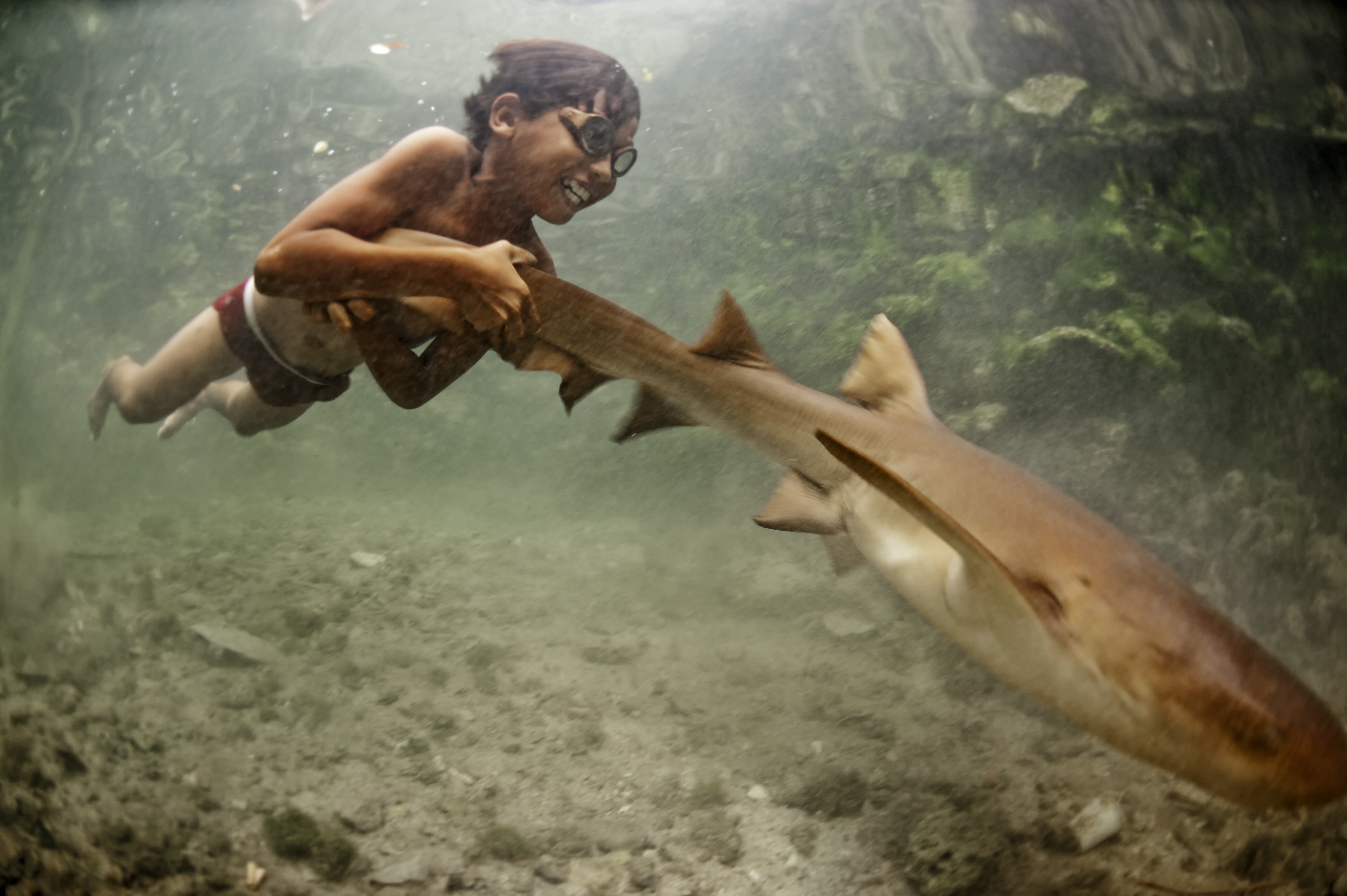 1. Enal plays with a small shark. 2. Bajau catch stingrays with nets and spears and use the tail section to make a yellow curry.
